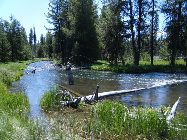 Cascade Guides Fly Fishing Central Oregon